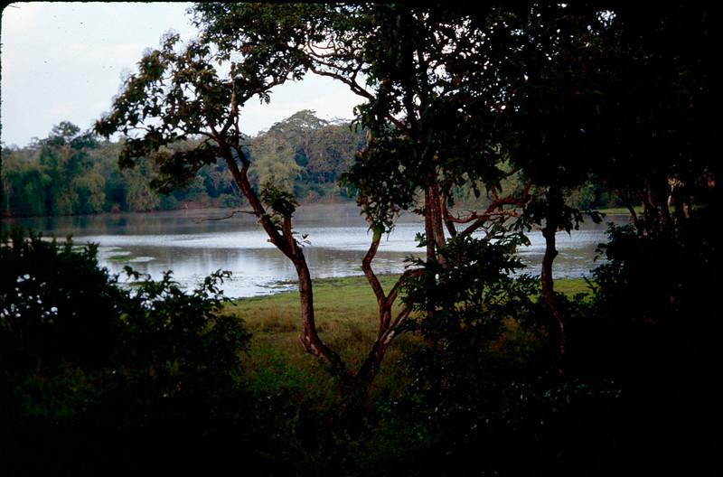 India1_082.jpg