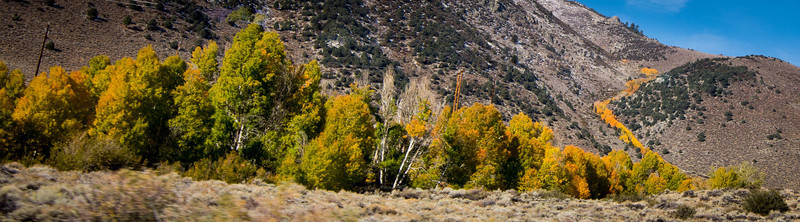 the Eastern Sierra Oct 2013