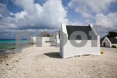 Day 6 - Kralendijk, Bonaire