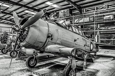 Aviation in Black & White