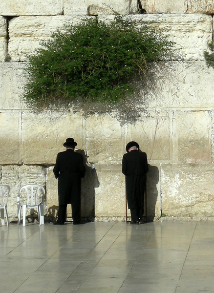 prayers at the western wall, Jewish Quarter, old city of Jerusalem