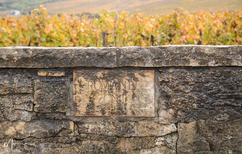 2019-10 - Burgundy Vacation-2811_edit.jpg