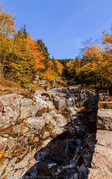 Crawford Notch State Park (NH) Collection