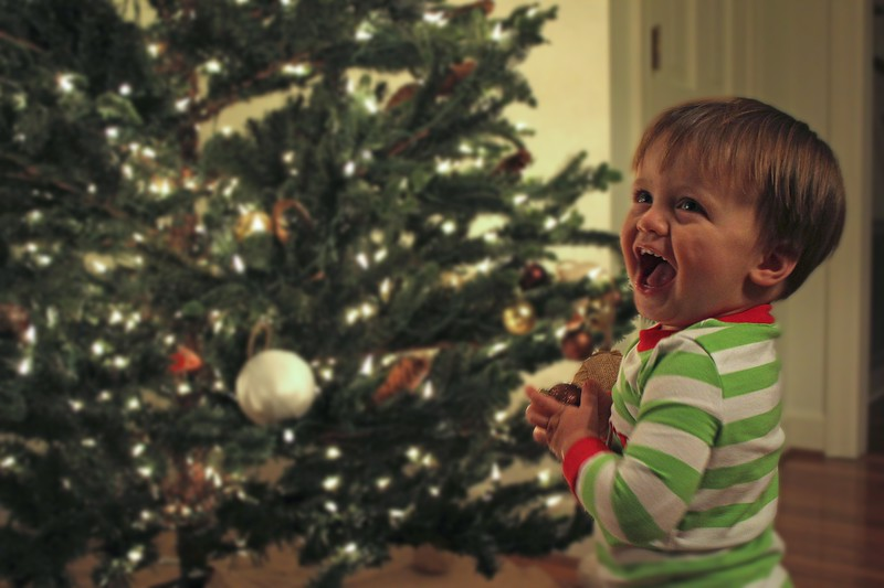 Henry with Christmas Tree 2013