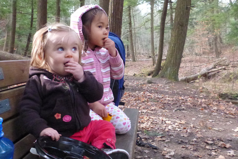 2012-Nov: Hike with Yorks