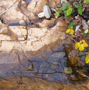 Weber Creek, Placerville CA