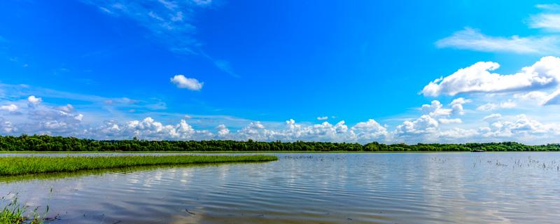 Mississppi River 64