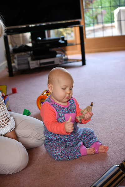 Daisy babysitting Sept 2017 018.JPG