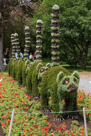 Montreal Mosaiculture