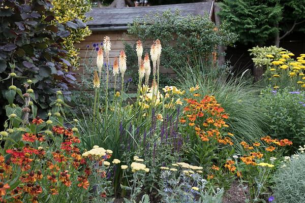 Mrs Gardiner's Garden
