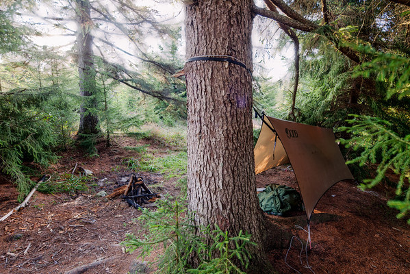 I like to backpack to remote locations to take these pictures. Here, in a recent outing in Dolly Sods, my camping hammock is barely visible under the rainfly; my army backpack stays dry on the pine needles underneath.