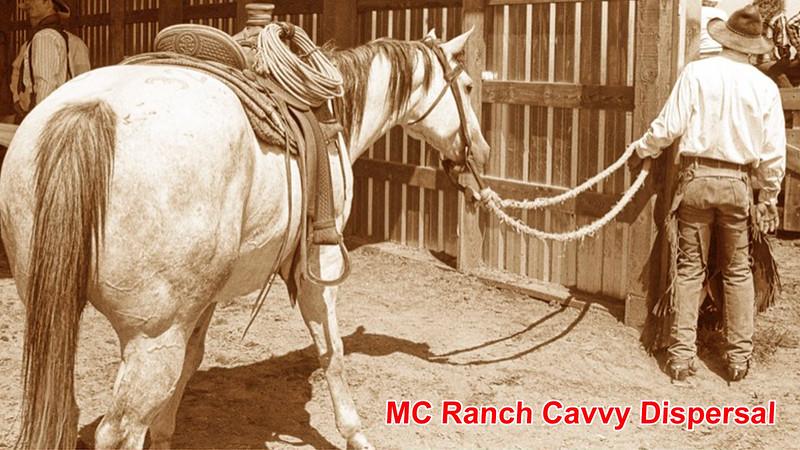 MC Horse Sale 2.mp4