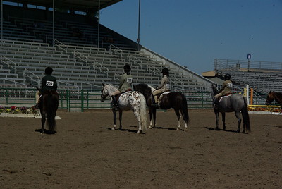 Sonoma County Fair Horseshow 2012