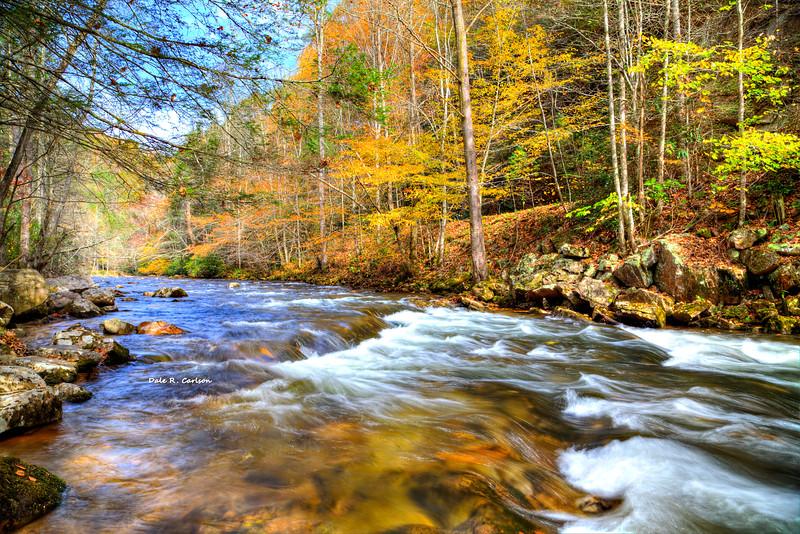 Whitetop River Fall