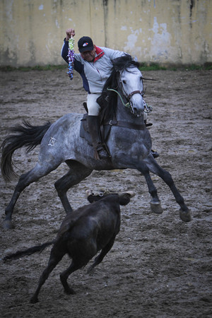 Bullfighting Training