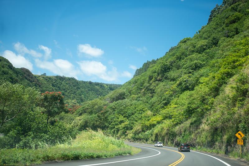 Hawaii2019-127.jpg
