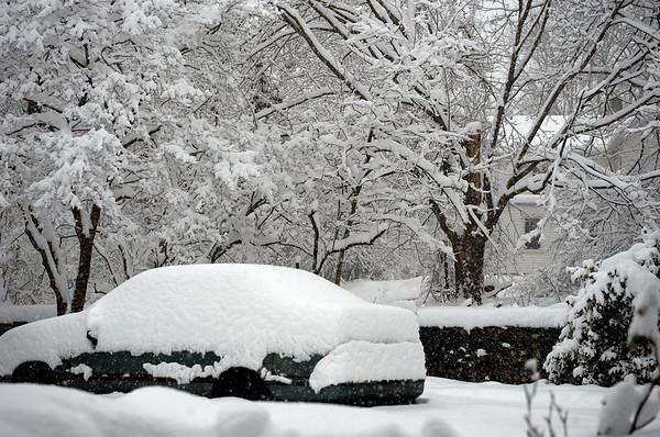 Winter 2/2010