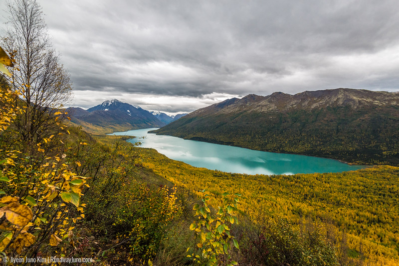2016.09_Alaska-6103882.jpg