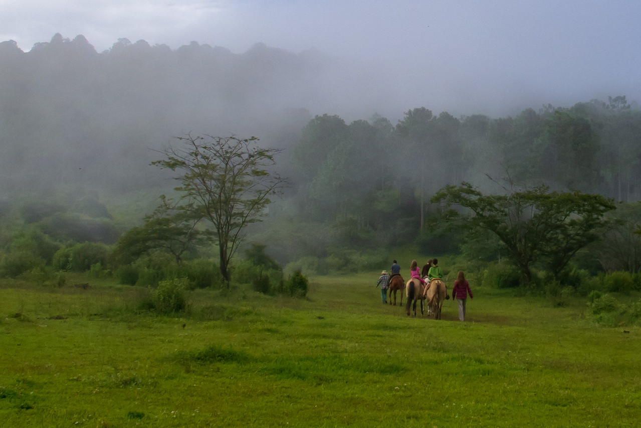 Riding Horses into the Cloud Forest at Rancho La Escondida