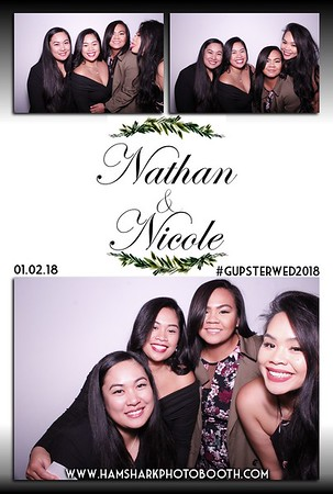 Nathan & Nicole Wedding
