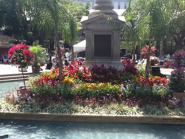 hemming fountain flowers.jpg