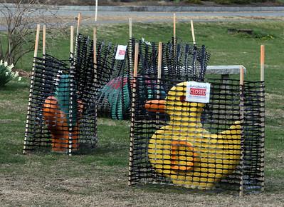 Playground animals fenced off Westford 041120