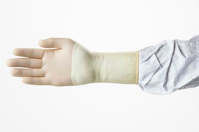 05.06 - Clean Room Gloves
