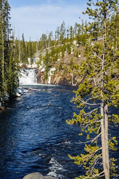 20130511-12 Yellowstone 008.jpg