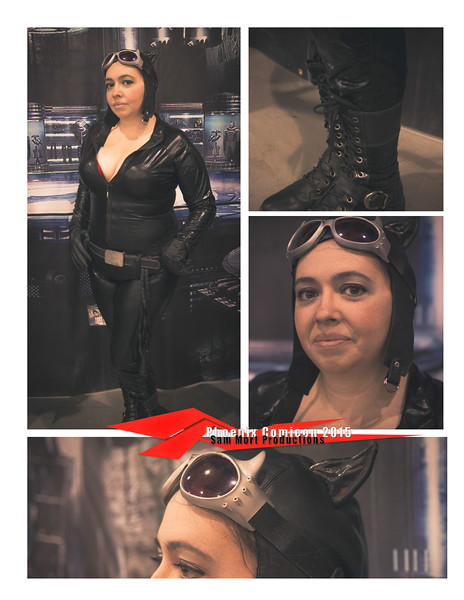 Collage_catwoman_Comicon_2015.jpg