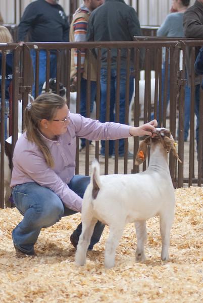 kay_county_showdown_goats_20191207-152.jpg