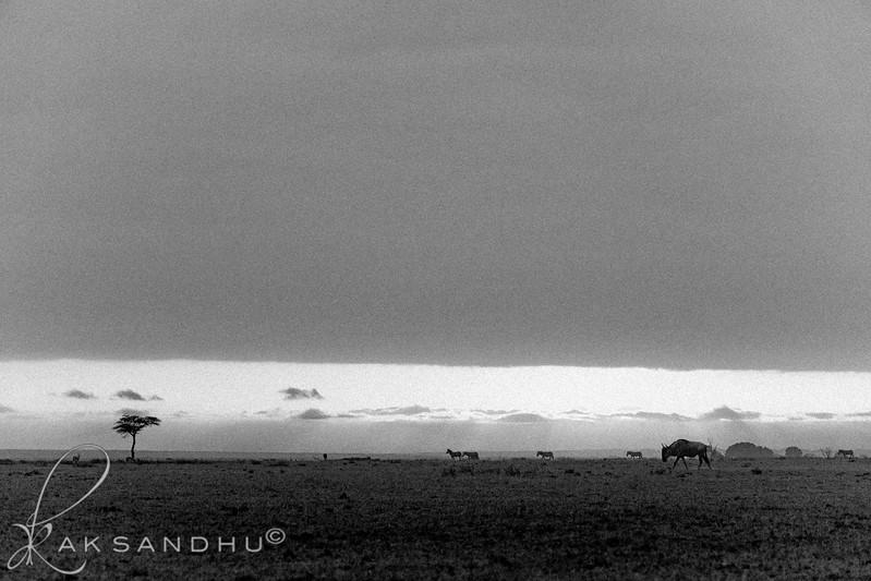SunInAfrica-009.jpg