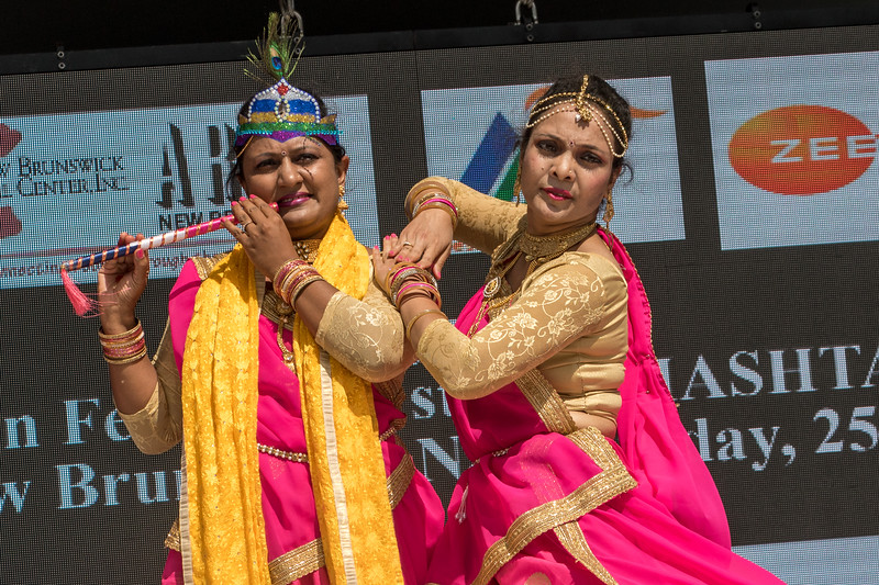 Photos from 2019 Indo-American Festival in Boyd Park, New Brunswick