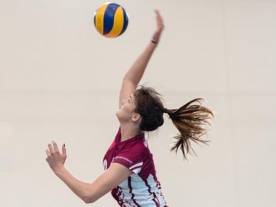 2013 AVL Canberra Heat v Queensland (women)