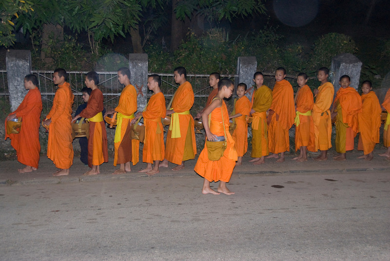 Monks in line during alms-giving ceremony in Luang Prabang, Laos