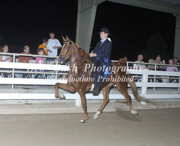 CLASS 20  SADDLEBRED  4 YRS & UNDER
