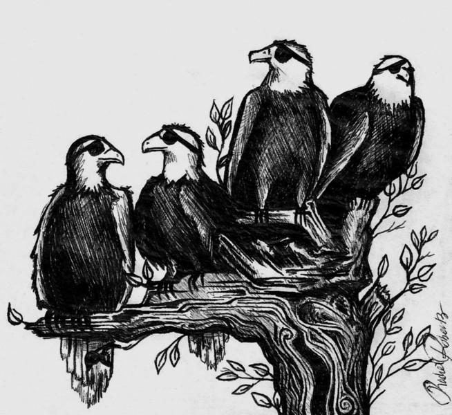 Eye-patch eagles.jpg