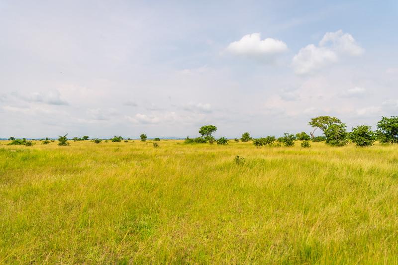 Uganda_T_QE-1693.jpg