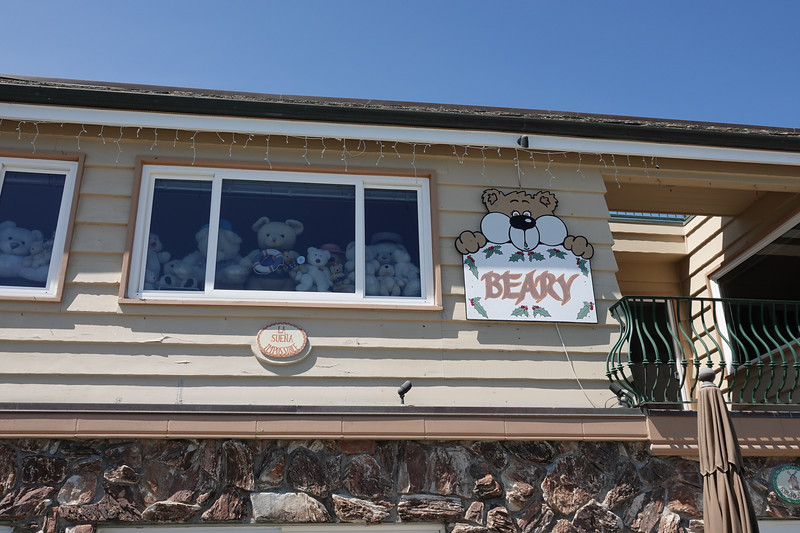 """Marcy Cook lives in the """"Beary"""" house with over 4,200 stuffed bears on Balboa Island"""