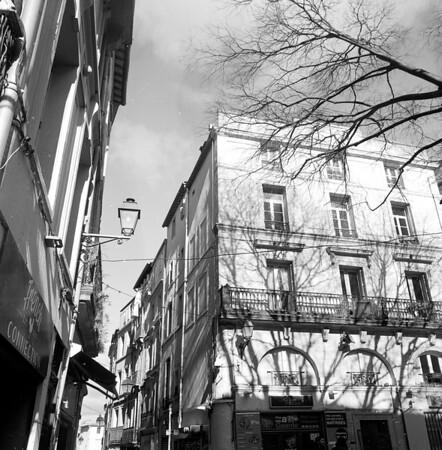 Montpellier Noir Blanc
