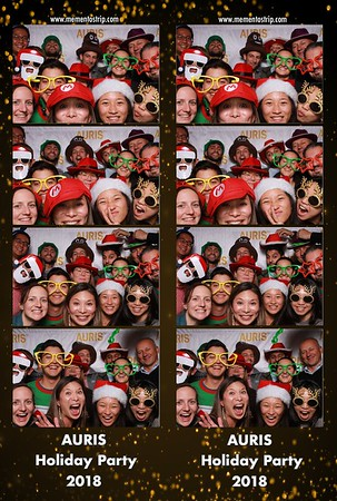 Auris Health Holiday Party 2018
