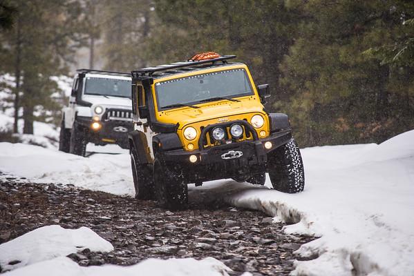 Ellensburg Snow Run
