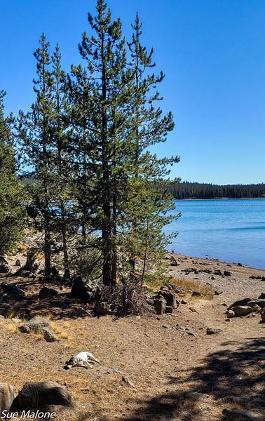 to Medicine Lake-23.jpg