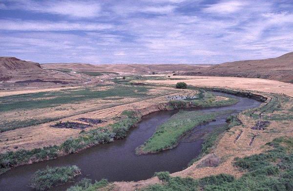 Nine Mile Ranch west of Walla Walla, WA. Riparian plantings for salmon habitat restoration. View upstream. June 17, 2002.