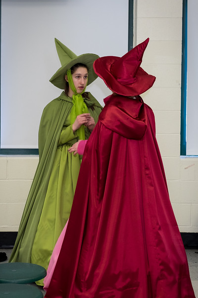 2015-03 Shrek Rehearsal 1431.jpg