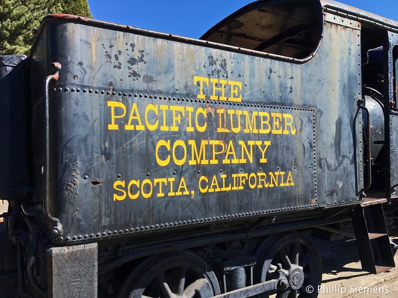 Heisler locomotive in Scotia