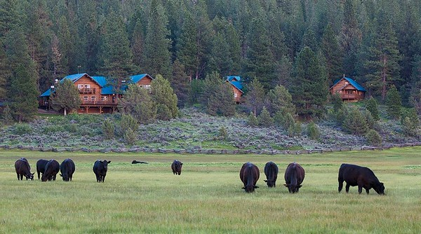 Fishhole Creek Ranch and Aspen Ridge Resort