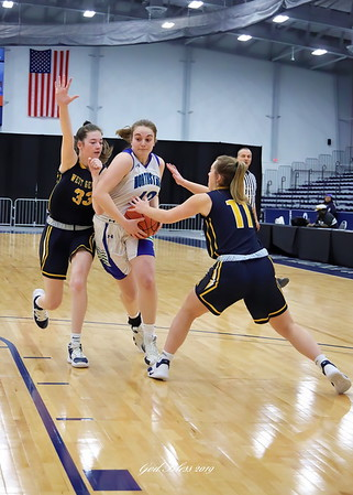 30120 CNS vs West Genesee Girls Semifinals