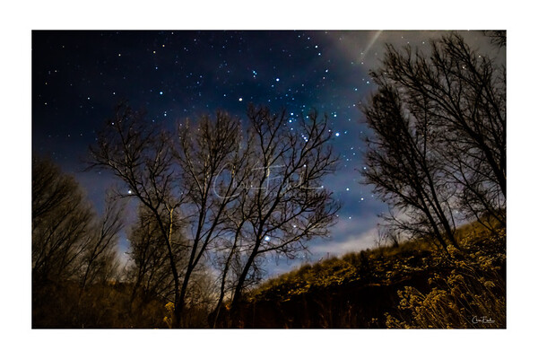 Fence Canyon Night Skies, Escalante Utah