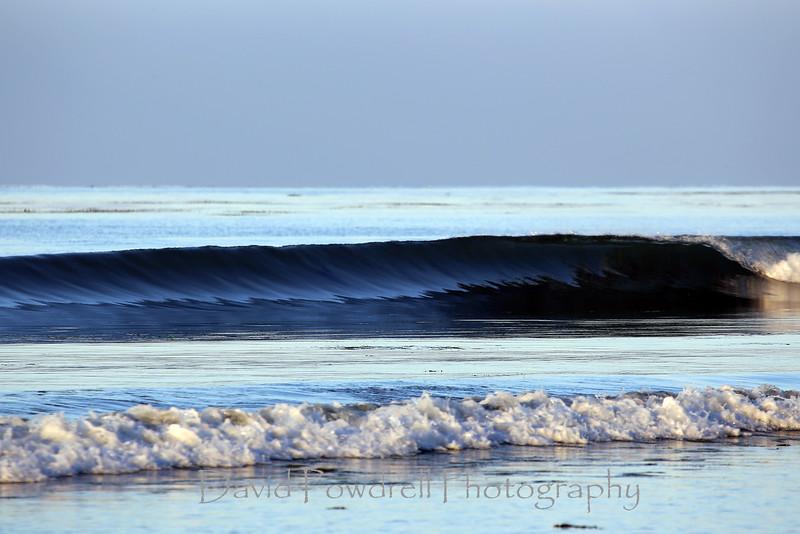 3 Tiny Surf.jpg