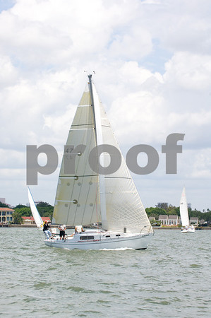 Jackal- Allen Davidson- Sail #47
